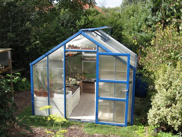 zur ck zur startseite vom kaktus point bilder foto16. Black Bedroom Furniture Sets. Home Design Ideas